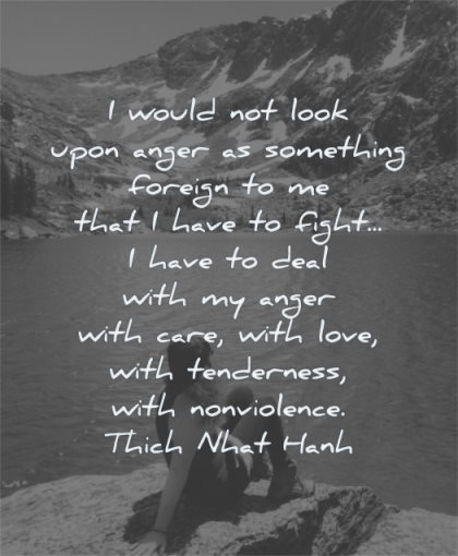 anger quotes would not look upon something foreign that have fight thich nhat hanh wisdom woman sitting water nature