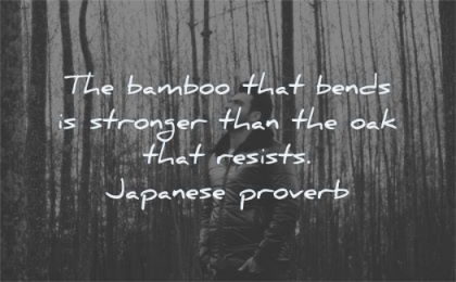 change quotes bamboo that bends stronger oak resists japanese proverb wisdom man nature