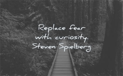 creativity quotes replace fear with curiosity steven spielberg wisdom path forest