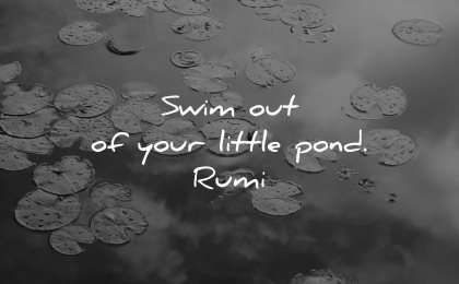 dream quotes swim out little pond rumi wisdom water lake
