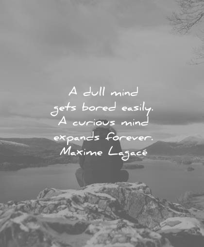 ef2ba27d691 education quotes dull mind gets bored easily curious expands forever maxime  lagace wisdom