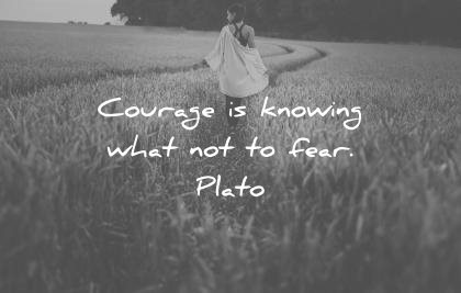 fear quotes courage knowing what wisdom