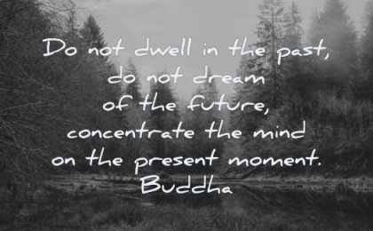 focus quotes not dwell past dream future concentrate mind present moment buddha wisdom nature trees