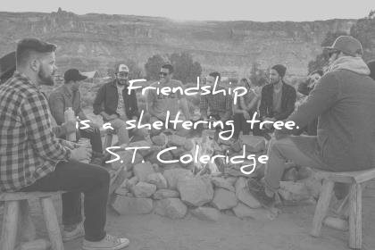 friendship quotes sheltering tree samuel taylor coleridge wisdom