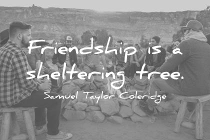 friendship quotes friendship is a sheltering tree samuel taylor coleridge wisdom quotes