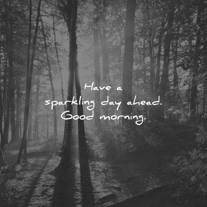 good morning quotes have sparkling day ahead wisdom nature trees forest