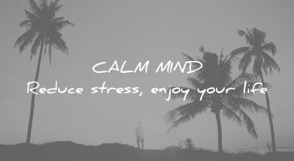 how to learn faster calm mind reduce stress enjoy your life wisdom quotes