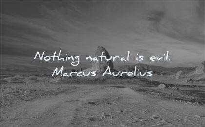 marcus aurelius quotes nothing natural evil wisdom rock nature
