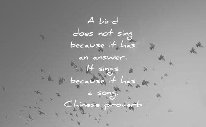music quotes bird does not sing because has an answer sings song chinese proverb wisdom
