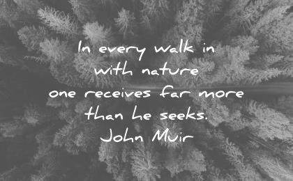 The Best Nature Quotes (Here Are 450 Of The Most Beautiful)