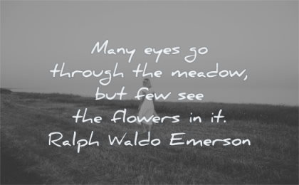 nature quotes many eyes through meadow few see flowers ralph waldo emerson wisdom woman walking fields