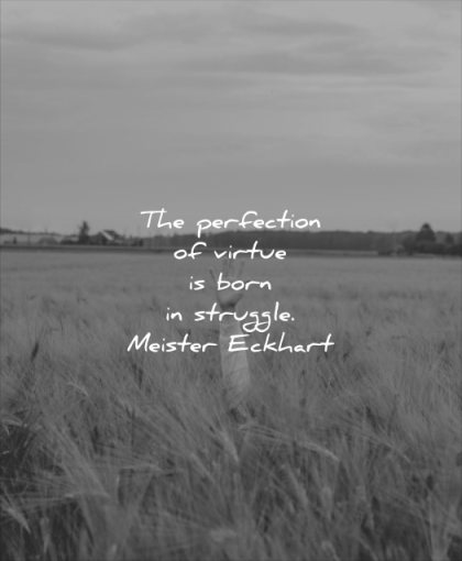 never give up quotes perfection virtue born struggle meister eckhart wisdom hand fields nature
