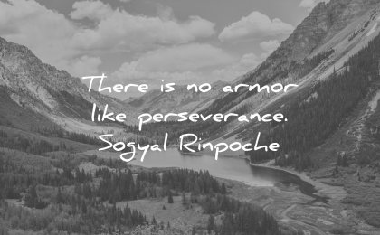 perseverance quotes there is no armor like sogyal rinpoche wisdom