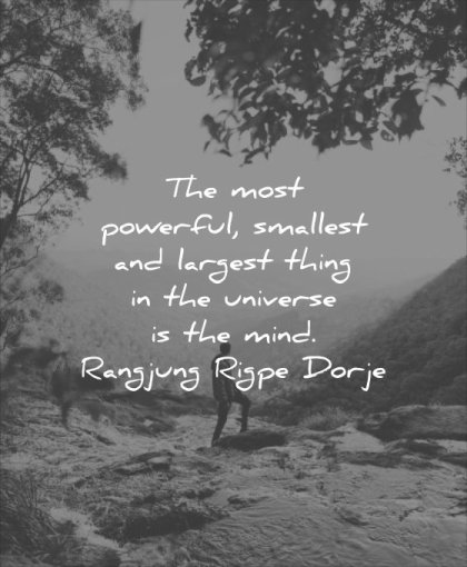 powerful quotes most smallest largest thing universe mind rangjung rigpe dorje wisdom