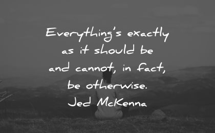 reality quotes everything exactly should cannot fact otherwise jed mckenna wisdom