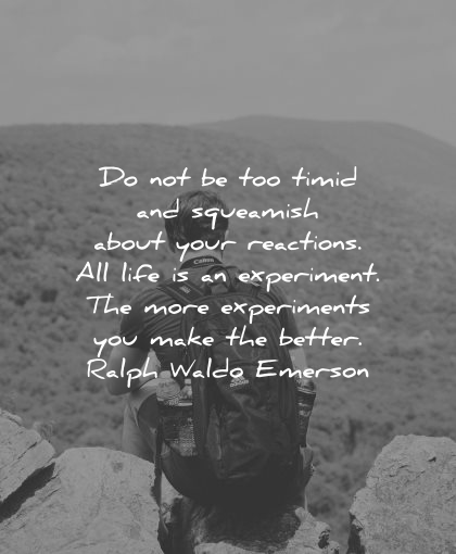 risk quotes timid squeamish about reactions life experiment ralph waldo emerson wisdom