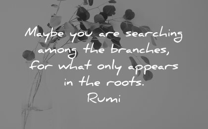 rumi quotes maybe searching among branches what only appears roots wisdom