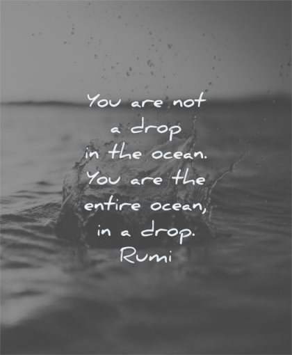 rumi quotes you are not drop in the ocean entire wisdom water sea