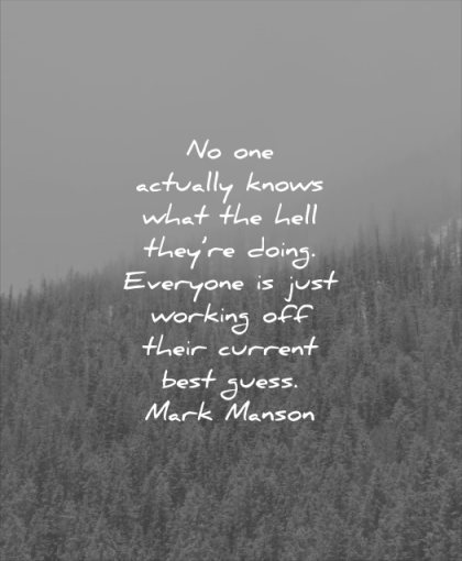 self esteem quotes actually knows hell they doing everyone just working off their current best guess mark manson wisdom nature tree pines inspirational