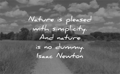 simplicity quotes nature pleased dummy isaac newton wisdom path