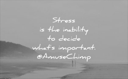 stress quotes inability decide whats important amuse chimp wisdom