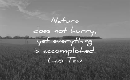 time quotes nature does hurry yet everything accomplished lao tzu wisdom fields