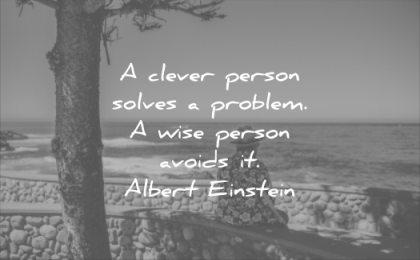 wise quotes clever person solves problem avoids albert einstein wisdom bench beach tree man relax